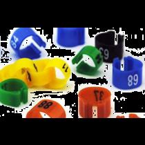 Duivenring: 51-75 blauw