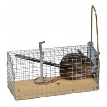 Muizenval (kooi) levend vangen